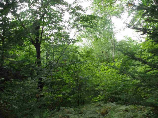 Quill Lake Lane, Mountain, WI 54149 (#50190706) :: Symes Realty, LLC