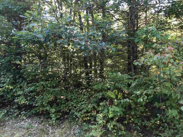Grindle Oak Drive, Crivitz, WI 54114 (#50191551) :: Symes Realty, LLC