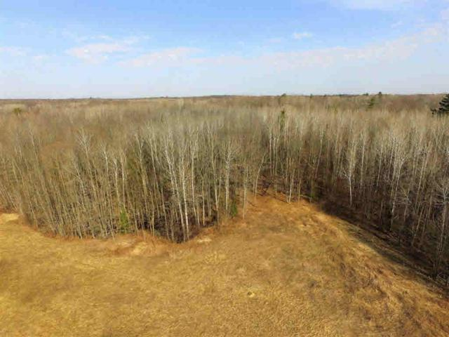 Hwy 141, Abrams, WI 54101 (#50191607) :: Dallaire Realty
