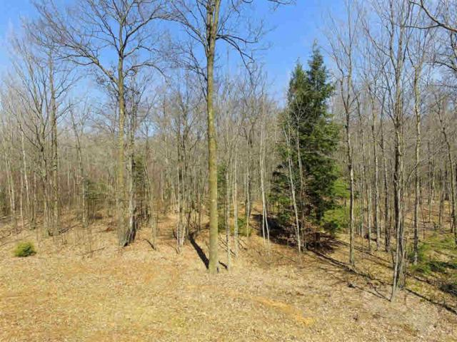 Hwy 141, Abrams, WI 54101 (#50191609) :: Dallaire Realty