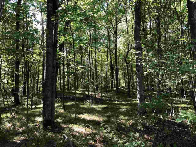 Bentley Road, Rosholt, WI 54473 (#50191733) :: Dallaire Realty