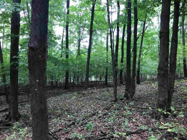 Oak View Drive, Shawano, WI 54166 (#50192052) :: Symes Realty, LLC