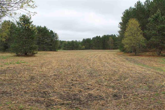 Gasset Road, Dunbar, WI 54119 (#50192122) :: Dallaire Realty