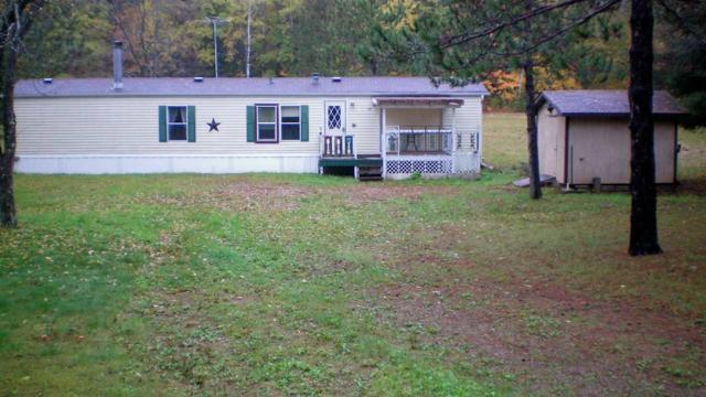 12271 Lonzo Lane, White Lake, WI 54491 (#50192835) :: Todd Wiese Homeselling System, Inc.