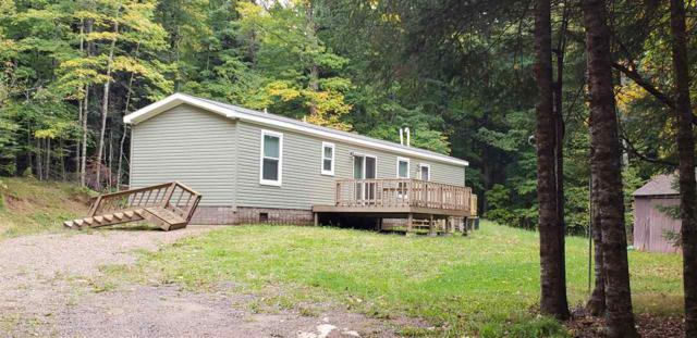 N12421 Old J Road, Athelstane, WI 54104 (#50192950) :: Dallaire Realty