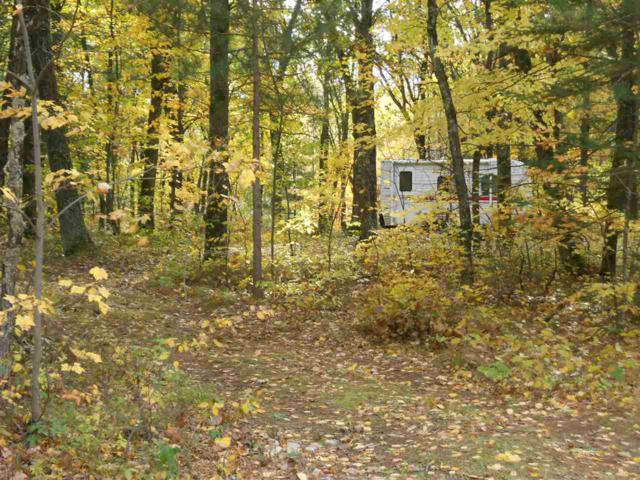 W1727 Big Sky Court, Keshena, WI 54135 (#50193152) :: Symes Realty, LLC