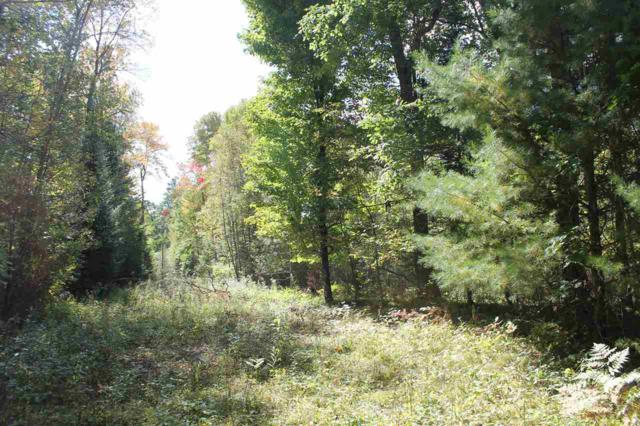 Richards Lane, Silver Cliff, WI 54104 (#50193156) :: Dallaire Realty