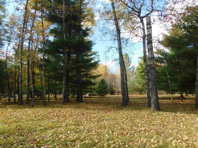 W1645 Council Hill Trail, Keshena, WI 54135 (#50193669) :: Dallaire Realty