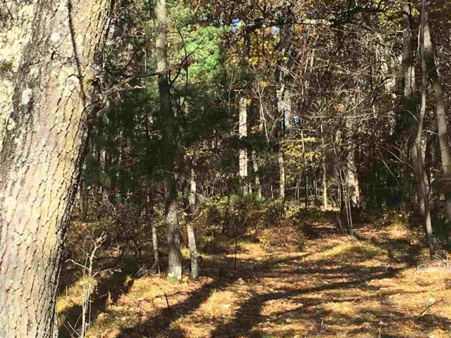 N1121 Sunrise Trail, Keshena, WI 54135 (#50193720) :: Todd Wiese Homeselling System, Inc.