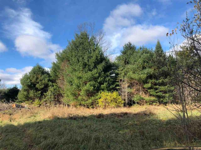 Niemann Road, Mountain, WI 54149 (#50193758) :: Dallaire Realty