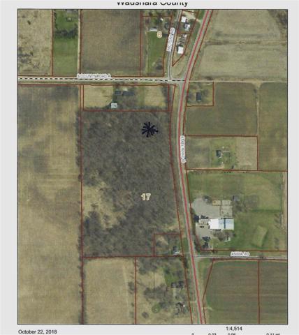 Hwy 49, Weyauwega, WI 54983 (#50193763) :: Carolyn Stark Real Estate Team