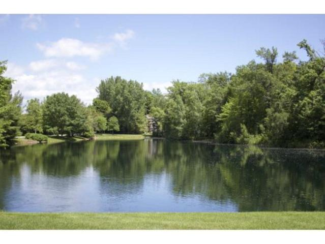 Wyndrush Drive, Suamico, WI 54173 (#50193836) :: Dallaire Realty