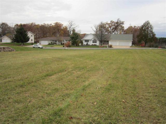 1375 Dallman Lane, Shawano, WI 54166 (#50194046) :: Todd Wiese Homeselling System, Inc.