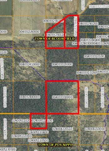 W1699 Aspen Avenue, Pine River, WI 54965 (#50194123) :: Dallaire Realty