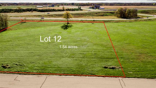 Wood Duck Drive, Fremont, WI 54940 (#50194400) :: Dallaire Realty