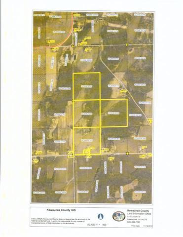 E1748 Bolt Road, Denmark, WI 54208 (#50194925) :: Symes Realty, LLC