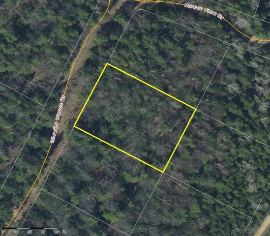 Idlewild Woods Drive, Sturgeon Bay, WI 54235 (#50195134) :: Todd Wiese Homeselling System, Inc.