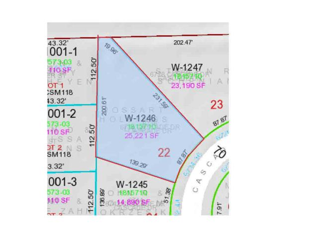 6734 Cascade Drive, Greenleaf, WI 54126 (#50195291) :: Todd Wiese Homeselling System, Inc.