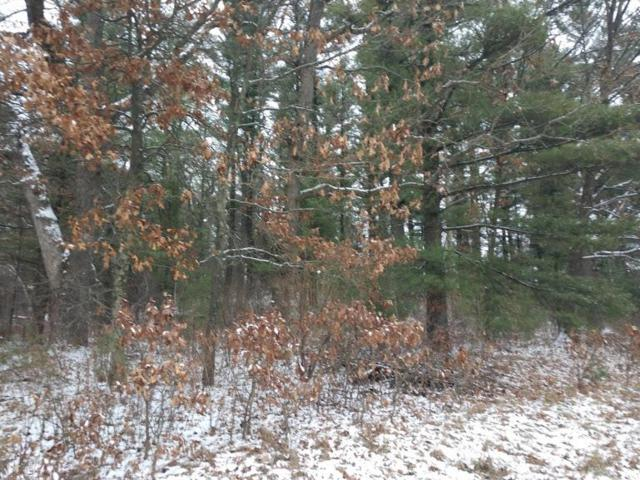Bighorn Court, Wautoma, WI 54982 (#50195337) :: Dallaire Realty