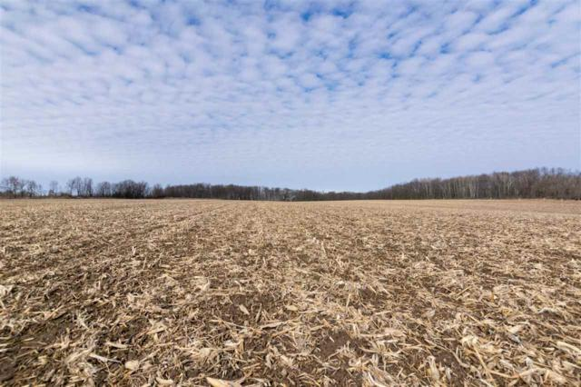 Dorn Road, New Holstein, WI 53061 (#50195370) :: Dallaire Realty