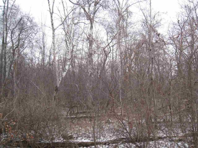 Snake Island Road, Sturgeon Bay, WI 54235 (#50196098) :: Dallaire Realty