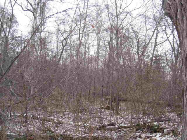 Snake Island Road, Sturgeon Bay, WI 54235 (#50196104) :: Dallaire Realty