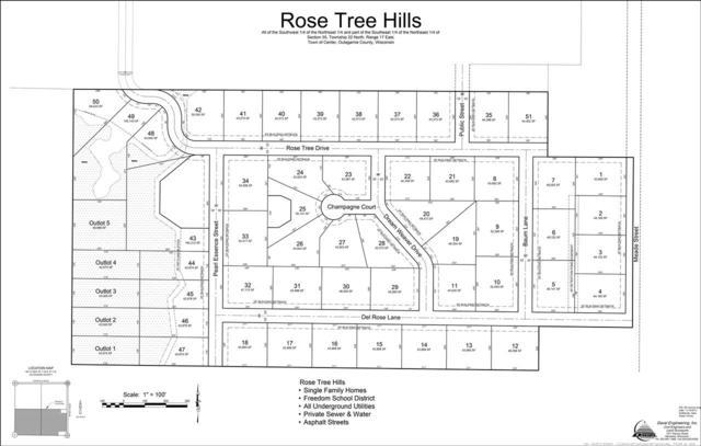 Meade Street, Appleton, WI 54913 (#50196133) :: Todd Wiese Homeselling System, Inc.
