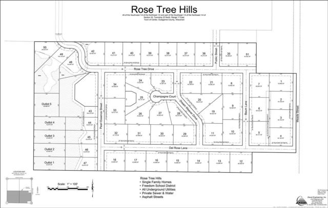 Rose Tree Drive, Appleton, WI 54913 (#50196135) :: Todd Wiese Homeselling System, Inc.
