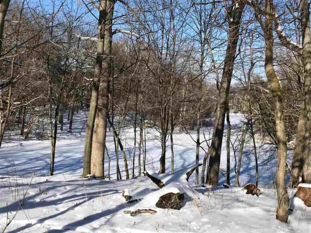 Virginia Drive, Waupaca, WI 54981 (#50196243) :: Dallaire Realty