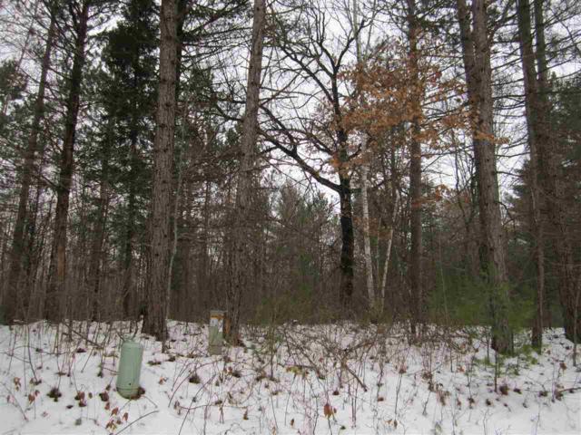 W1561 Hawks Nest Trail, Keshena, WI 54135 (#50196430) :: Symes Realty, LLC