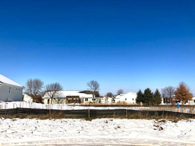 Hoelzel Way, Appleton, WI 54915 (#50196584) :: Dallaire Realty