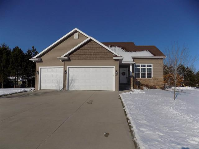 1188 Starview Drive, Appleton, WI 54913 (#50196637) :: Todd Wiese Homeselling System, Inc.