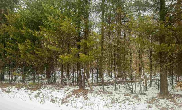 School House Road, Sobieski, WI 54171 (#50196640) :: Dallaire Realty