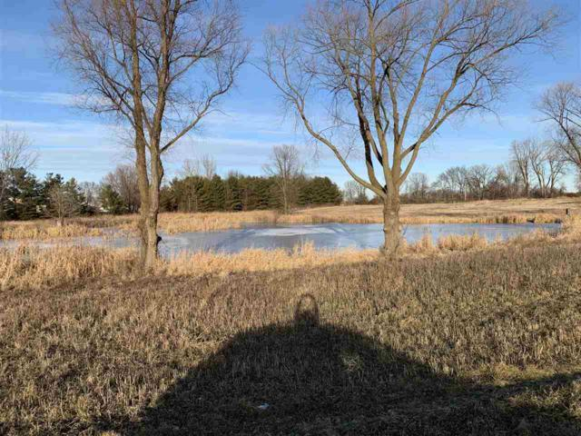 Quarry Drive, Omro, WI 54963 (#50196758) :: Todd Wiese Homeselling System, Inc.