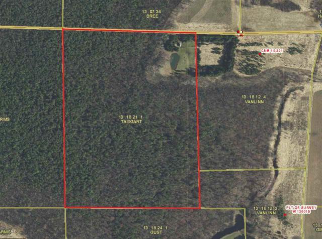 E5095 Swamp Road, Manawa, WI 54949 (#50196868) :: Dallaire Realty