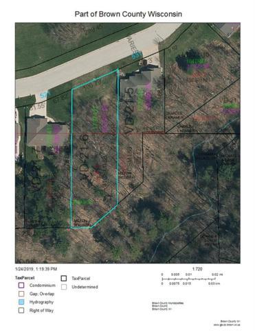 Diamond Ridge Circle, Denmark, WI 54208 (#50197013) :: Dallaire Realty