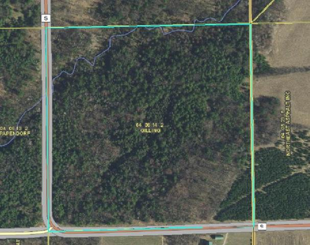 E5330 Hwy S, Marion, WI 54950 (#50197021) :: Dallaire Realty