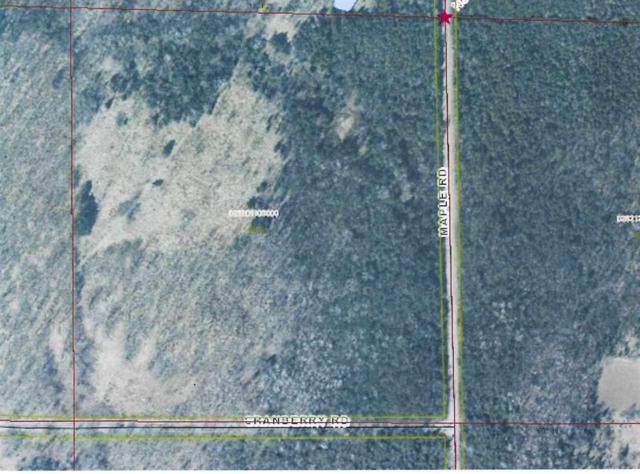 Maple Road, Birnamwood, WI 54414 (#50197038) :: Dallaire Realty