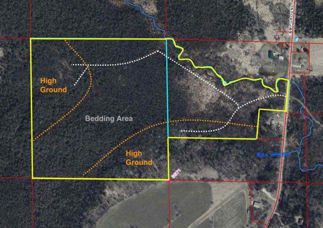 Campground Road, Leopolis, WI 54948 (#50197228) :: Todd Wiese Homeselling System, Inc.
