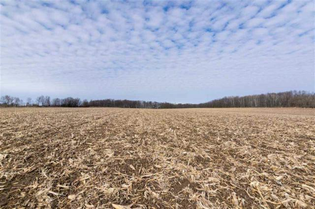 Dorn Road, New Holstein, WI 53061 (#50197499) :: Todd Wiese Homeselling System, Inc.