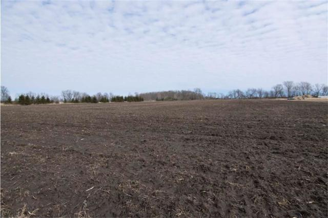 Dorn Road, New Holstein, WI 53061 (#50197501) :: Todd Wiese Homeselling System, Inc.