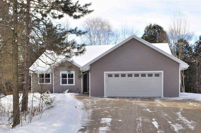 1203 River Valley Road, Sobieski, WI 54171 (#50197553) :: Todd Wiese Homeselling System, Inc.