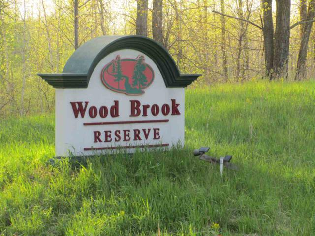 Wood Brook Circle, Little Suamico, WI 54141 (#50197575) :: Dallaire Realty