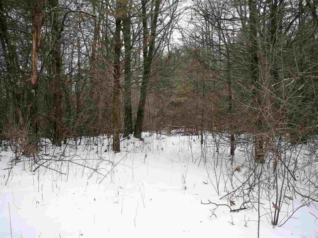 Cedar Trail, Neshkoro, WI 54960 (#50197606) :: Symes Realty, LLC