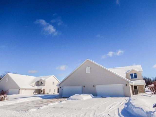 420 N Splake Court, Peshtigo, WI 54157 (#50197731) :: Todd Wiese Homeselling System, Inc.