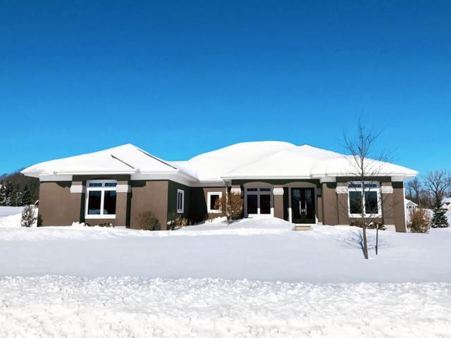1312 S Sedona Circle, Hobart, WI 54155 (#50197765) :: Todd Wiese Homeselling System, Inc.
