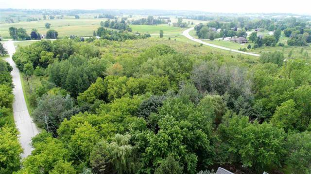 Palm Tree Road, Saint Cloud, WI 53079 (#50197948) :: Symes Realty, LLC