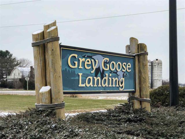 Greenwing Lane, Fremont, WI 54940 (#50197969) :: Symes Realty, LLC