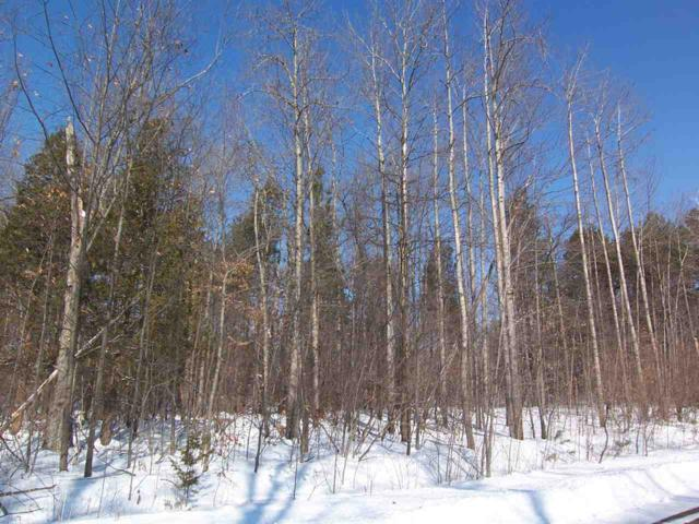 West Brown Road, Sobieski, WI 54171 (#50198128) :: Dallaire Realty