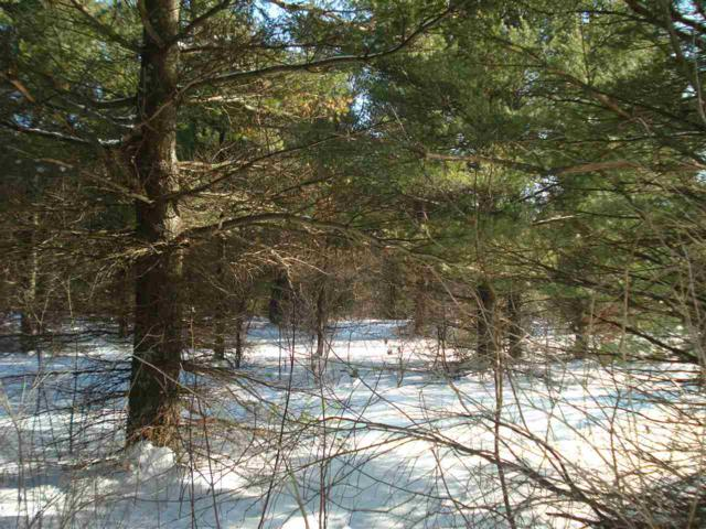 Hwy Gg, Hancock, WI 54943 (#50198198) :: Dallaire Realty